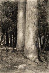 L.Wyczółkowski, Pines in the Yew Grove, 1935, MOB W.  144